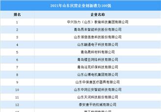 2021年山东民营企业创新潜力排行榜TOP100(附榜单)