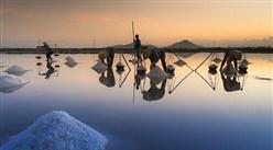 2021年7月安徽省原盐产量数据统计分析