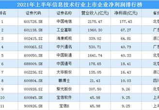 2021年上半年信息技术行业上市企业净利润排行榜(附全榜单)