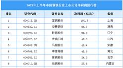2021年上半年中國鋼鐵行業上市公司凈利潤排行榜(附全榜單)