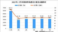 下半年家�出口承�海�2021年下足足比刚才发半年中��家�出口情�r�A�y分析