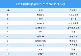 2021中国新能源汽车车型TOP30排行榜(附榜单)
