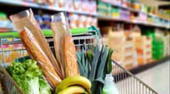 """""""双循环""""战略专题:2021年中国食品行业市场现状及发展前景预测分析"""