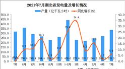 2021年7月湖北省发电量统计分析