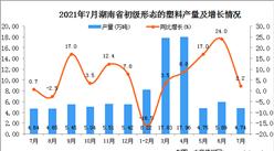 2021年7月湖南省初级形态的塑料产量数据统计分析
