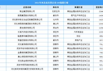 2021年河北省民营企业100强排行榜(附全榜单)