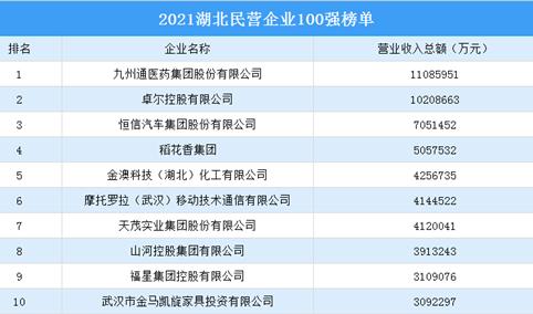 2021湖北民营企业100强排行榜(附完整榜单)