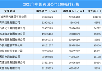 2021年中国跨国公司100强排行榜(附榜单)