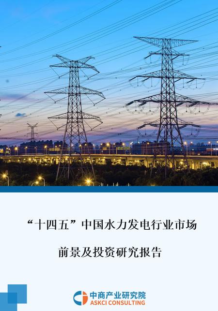 """2021年""""十四五""""中国水力发电行业市场前景及投资研究报告"""