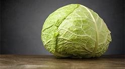 2020年10月28日北京市圓白菜批發價格行情