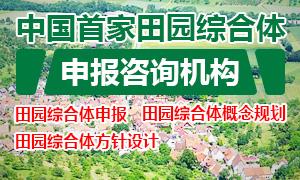 田园综合体申报规划咨询