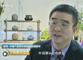 央视财经频道采访中商产业研究院高级咨询顾问连伟