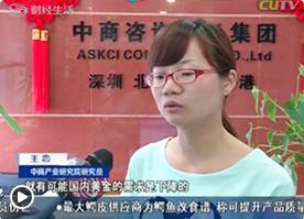 深圳财经频道采访我公司研究员王恋